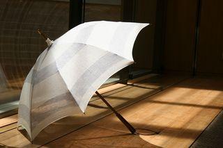 日傘画像.jpg